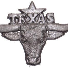 iron-texas-longhorn